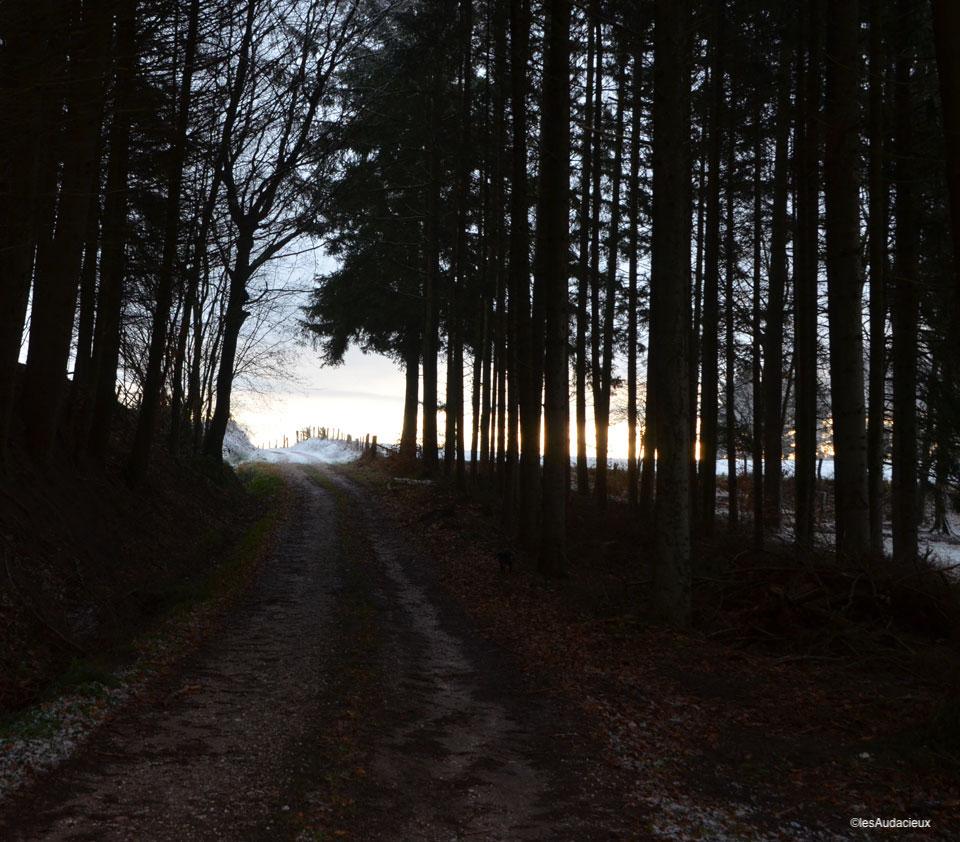lever de soleil - photo KMS communication #lesaudacieux